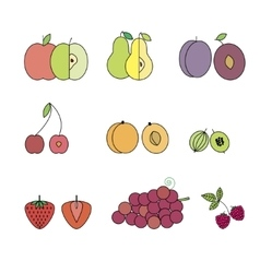 Flat Design Isolated Fruit Icon Set vector image