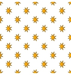Eight pointed star pattern cartoon style vector image vector image