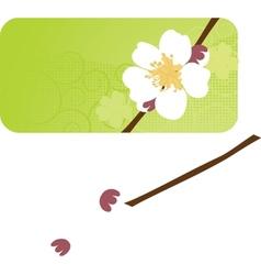 Cherry blossom sakura flower vector image