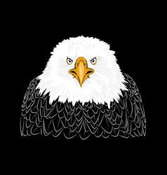 Decorative eagle head vector