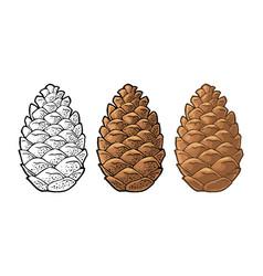 Pine cone vintage color flat vector