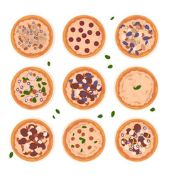 pizza for every taste vector image