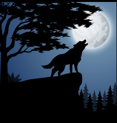 silhouette wolf in hill at night vector image