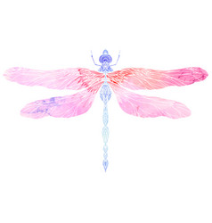Watercolor of dragonfly with boho pattern e vector