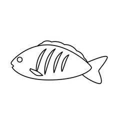 Fish sea food vector