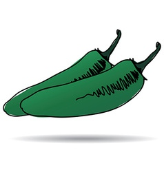 Freehand drawing jalapeno icon vector