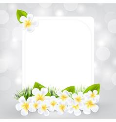 gift card with frangipani vector image