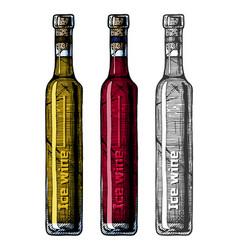ice wine vector image