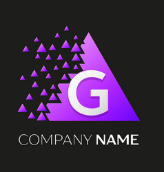 letter g logo symbol on colorful triangle vector image