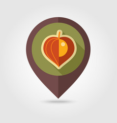 Physalis berries flat pin map icon vegetable vector