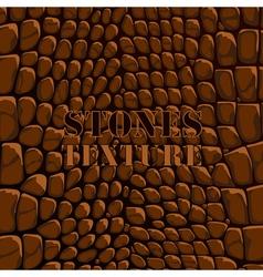 Stones texture brown vector image