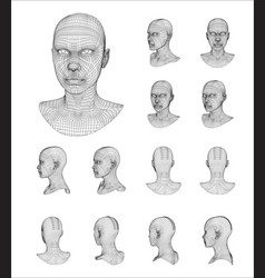 wireframe head 3d model vector image