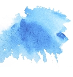 spot watercolor vector image