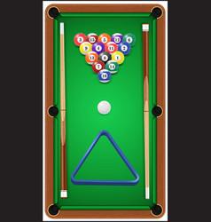 Billiard set billard balls cue and billiard vector