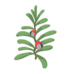 berry icon isometric style vector image