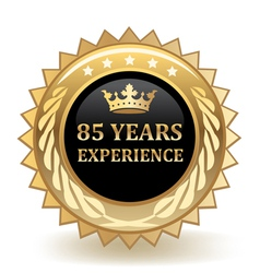 Eighty Five Years Experience Badge vector