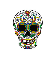 mexican sugar skull with floral pattern dia de vector image