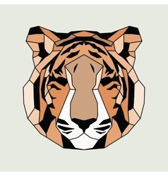 Orange lined low poly tiger vector