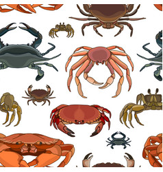 crabs set pattern vector image vector image