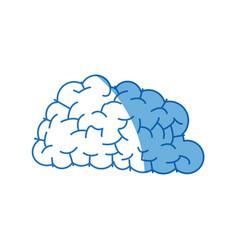 human brain think creativity image vector image