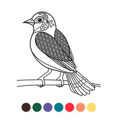 antistress coloring zentangle bird vector image