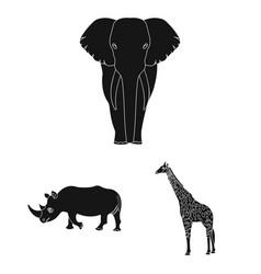Different animals black icons in set collection vector