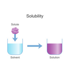 dissolving solids solubility chemistry vector image