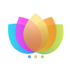 lotus colorful flowers icon vector image