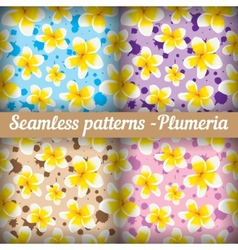 Plumeria Set of seamless patterns Floral vector