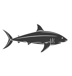 Shark fish glyph icon vector