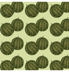 Watermelon raw pattern vector image