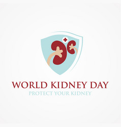world kidney day poster vector image