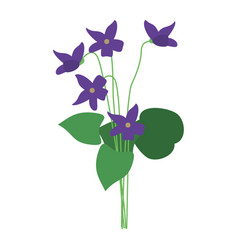 violet flower nature spring icon vector image