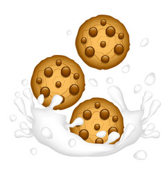 oatmeal cookies with chocolate chip and a splash vector image