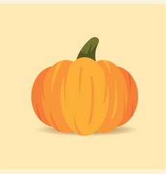 orange pumpkin isolated on beige background cute vector image