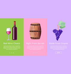 red wine choice right from barrels made from grape vector image