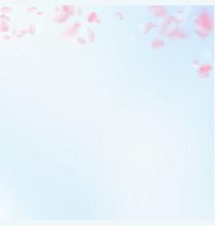 Sakura petals falling down romantic pink vector