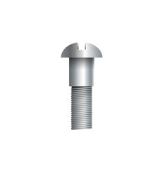 Steel carriage bolt isolated on white vector