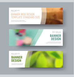 template of white standard web banners with space vector image