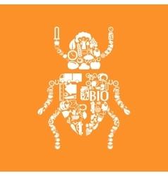 Beetle icon vector