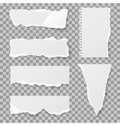 Blank torn paper with bends and tears set vector