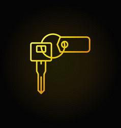 Car key with tag colorful icon vector