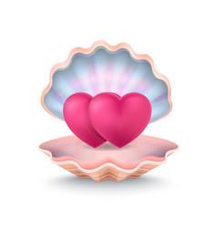 Closeup two hearts shell vector