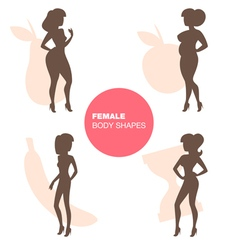 Female body shapes vector