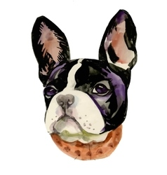 French Bulldog muzzle watercolor vector