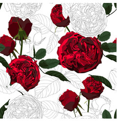 red white roses flowers with leaves seamless vector image