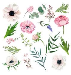 set tiny watercolor anemones leaves berries vector image
