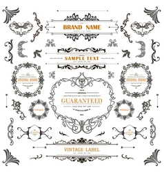 Vintage decorations curl elementsClassical vector image