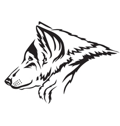 wolf muzzle vector image