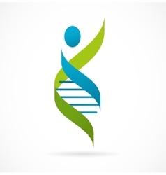 DNA genetic symbol - man icon vector image vector image